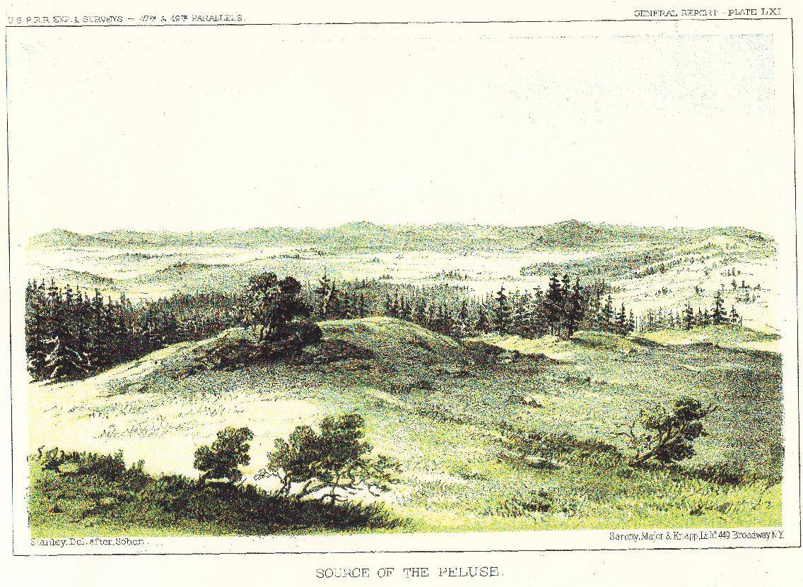 The Palouse Prairie